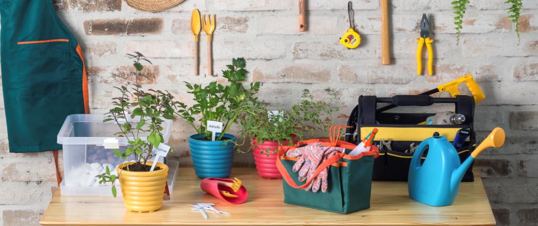 Faça uma mini-horta de chás em casa