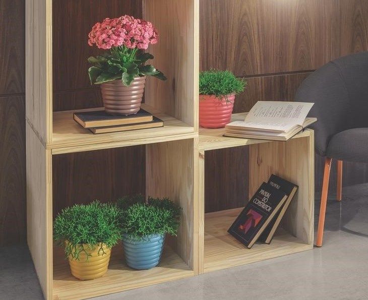Conozca recomendaciones para cuidar las flores dentro de casa