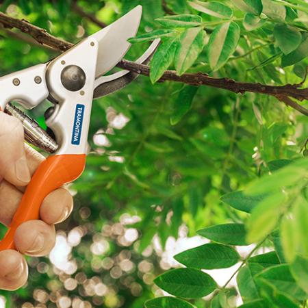 Qual a ferramenta de poda perfeita para você?
