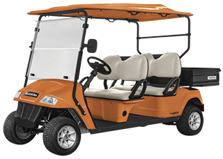 Electric utility vehicle Elettro 250CP - 4 Passengers