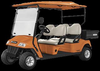 Vehículo utilitario eléctrico Elettro 250CP - 4 Pasajeros