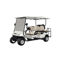 Electric Utility Vehicle Elettro 170PA - 6 Passengers